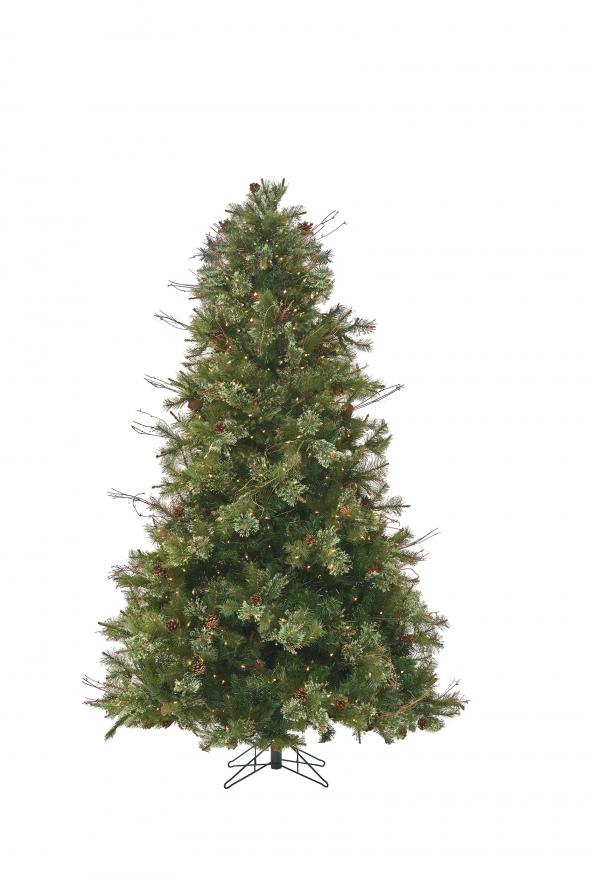 Foxboro Pine
